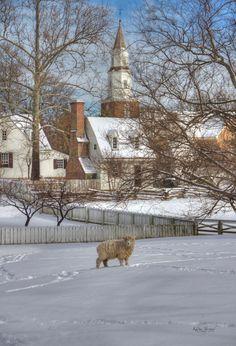 Winter in Colonial Williamsburg Virginia | Karen Jorstad Photography