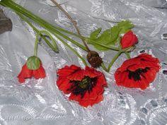 Флористика искусственная Лепка Несколько работ  Фарфор холодный фото 8