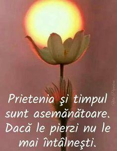 True Words, Spirituality, Faith, Quotes, Tik Tok, Volkswagen, Baby, Quote, Good Night