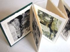 Cracks by Jill McKeown. Accordion format artist's book. I like how the ink and what looks to be water colors is used to create a mood or feeling. This could be nice paired with images.