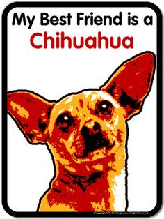 My Best Friend Chihuahua - Large 3x4 Dog Art Magnet ...