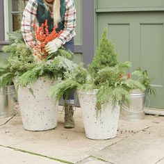 Outdoor Christmas Planters, Christmas Urns, Front Door Christmas Decorations, Farmhouse Christmas Decor, Christmas Tree Themes, Winter Christmas, Outdoor Planters, Planter Pots, Best Outdoor Christmas Decorations