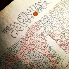 #ambrosebierce #theaustraliangrasshopper #calligraphy by soy.bean.drink