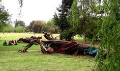 """Slain Dragon"" by Sybrand Wiechers and John Yannis Generalis - JoziLandArt November 2014"
