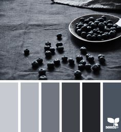 Colour pallet -  Navy walls (Master, Living) Dark Grey (theater)  1st colour: Overall walls