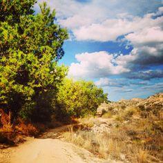 Ruta Senda running desde presa Elche a Racó de la Morera.