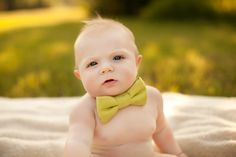 baby bow tie ;) cuteness