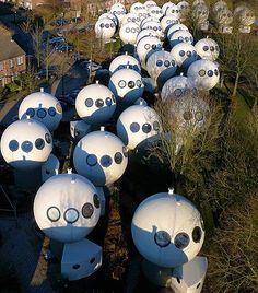 Bolwoningen, Hertogenbosch, Netherlands