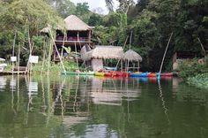 Reserva Evológica de Nanciyaga Catemaco Veracruz. Región de los Tuxtlas, se encuentra en la sierra de los Tuxtlas y la laguna de Ostión, comprende selva mediana y alta perennifolia, pradera y poblaciones de cerro, nogal, liquidambar, y formaciones de bosque tropical además de la vegetación acuática y subacuática.