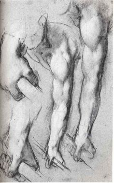 working hands by Leonardo Da Vinci Life Drawing, Figure Drawing, Drawing Sketches, Painting & Drawing, Art Drawings, Beaux Arts Paris, Anatomy For Artists, Renaissance Men, Pierre Auguste Renoir