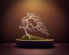 #31 - A haunting silver windswept style wire Bonsai tree. The tree itself is made from silver aluminium wire. The windswept style works best with a deciduous tree design, as the movement of the branches needs to be the main focus. I chose the silver wire for this design to again bring focus to the branch structure, it almost appears to light up! The long pot enabled me to really stretch out the branches and exaggerate the effect from the wind. I bought some colour to the Bonsai with the lush…