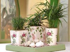 As plantas ou flores sempre alegram uma casa e deixam o clima mais leve e descontraído para os morad
