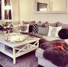 Cozy living room. Pets and all