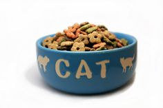 Homemade Cat Food Recipes - Dr. Bachelor's Lucky Putty Chicken Dinner and more recipes