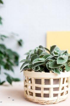 Weave Basket Planter