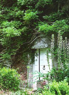 Secret door?