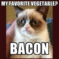Grumpy Cat's favorite vegetable is bacon!