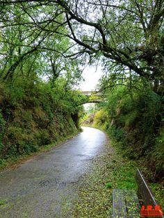 Paseo de Valdelobos, y Vía Verde del Ferrocarril Vasco Navarro.  http://estellalizarra-ciudadmedieval.blogspot.com.es/  www.casaruralnavarra-urbasaurederra.com   http://nacedero-rio-urederra.blogspot.com.es/