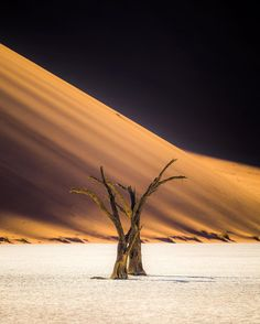 Deadvlei is by far one of the wildest landscapes in the world the dead trees are such a harsh contrast against the white clay and golden sand. The word surreal doesn't even come close to describing it @namibia_endlesshorizons #sharemynamibia