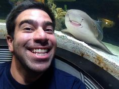 Animal Photobombs Are Even Better