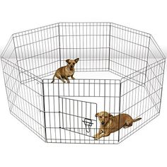 OxGord Dog Animal Playpen Large Metal Wire Folding Exercise Yard Fence 8 Panel Popup Kennel Crate Fence Tent Portable - Black - Premium Quality - 2015 Newly Designed, 24 Inches -- Learn more by visiting the image link. Rabbit Playpen, Dog Playpen, Pet Kennels, Outdoor Dog, Indoor Outdoor, Pop Up, Wire Dog Crates, Dog Pen, Pet Mat