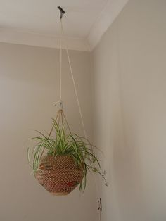Hanging Plant using a flag anchor for raising and lowering | Flickr - Photo Sharing!