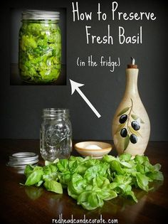 gardening preserving basil tips fridge, gardening
