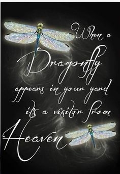 Tattoo quotes love memories grief 18 ideas for 2019 - Memory Tattoo Dragonfly Quotes, Dragonfly Art, Dragonfly Tattoo, Dragonfly Necklace, Dragonfly Images, Butterfly Quotes, Great Quotes, Inspirational Quotes, First Love