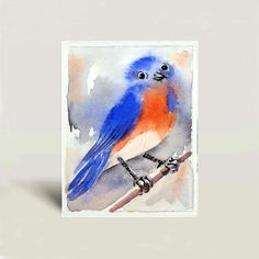 Blue Bird painting - Watercolor Painting Print - Eastern Bluebird, Nature Art, Bird Painting by LaBerge Muren - 5 x 7