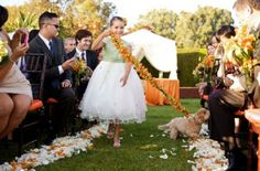 Adorable Ways To Include Your Pet In Your Wedding – Part 2:   Or Flower Girl escort.
