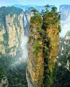 Our planet looking fine! Zhangjiajie National Forest Park China | Alla Petropavlovska Say Yes To Adventure