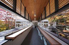 Bakery and restaurant Sawamura in Karuizawa by Yuji Tanabe Architects