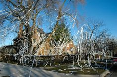There are few things more enjoyable than TP'ing someone's house or office. Careful, kids. Don't get caught by the police.