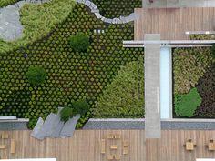Washington Mutual Center Roof Garden, Seattle, Washington, 2007
