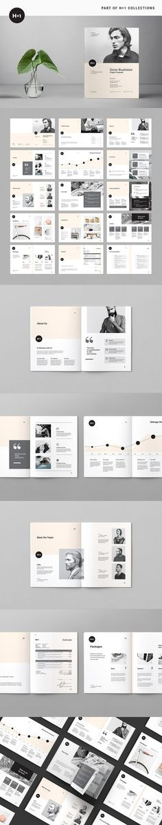 Simple Project Proposal Brochure Templates  Brochure Templates