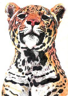 acuarela jaguar - Buscar con Google