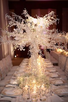 Winter wedding - iced branches ~