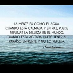 Mente calmada y agitada Wise Quotes, Book Quotes, Inspirational Quotes, Frases Instagram, Quotes En Espanol, Spanish Quotes, Peace Of Mind, Beautiful Words, Favorite Quotes