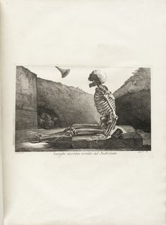 Engraving of a skeleton sitting up in a grave, viewed from the side, looking up to the bell of a horn (Gabriel's trumpet), Table 6 from Jacques Gamelin's Nouveau recueil d'osteologie et de myologie, 1779.