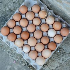 Farm fresh eggs daily at our house thanks to our hardworking free range hens! #nofilter