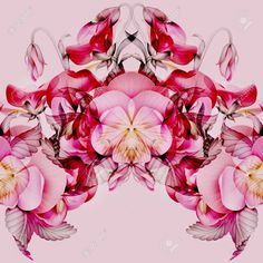 Image result for kaleidoscope flowers