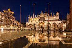 St. Mark's Basilica Reflection at Night
