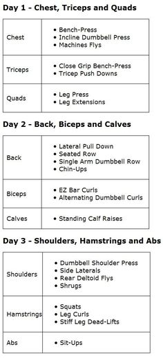 Better Pic Of 3 Day Split. Add It In With Everyday Cardio And Yoga . Better Pic of 3 day split Add it in with everyday cardio and yoga 3 day workout plans - Workout Plans Weight Training Schedule, Workout Schedule, Training Plan, Training Tips, Workout Routines, Split Workout Routine, Strength Training Program, Muscle Training, Running Training