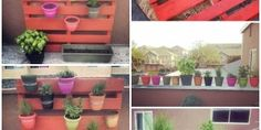 The Perfect DIY Vertical Planter for your Garden