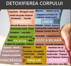 """Harta"" DETOXIFIERII corpului 