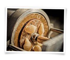 Bronze die artisan pasta.