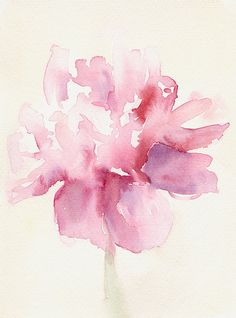 Pink Peony Watercolor Paintings