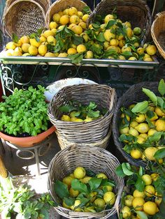 ~Greek fresh lemons~