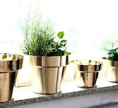 Gold metal spray painted terracotta pot plants