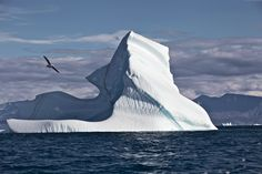 Iceberg in Greenland. Photo by Galya Morrell.